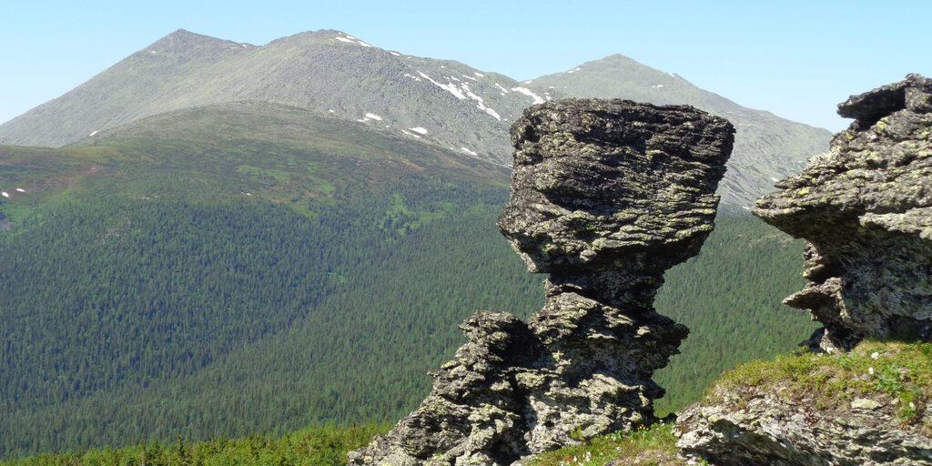 Экологический маршрут в заповеднике «Вишерский».
