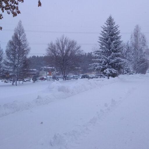 Ты почему, зима, всегда такая внезапная?!