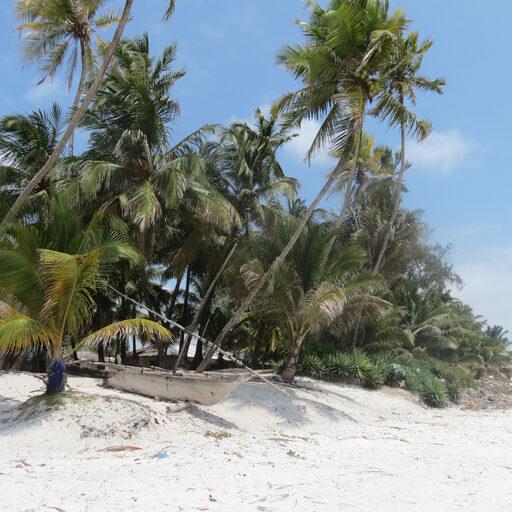 Занзибар-райский остров или царство пофигизма…