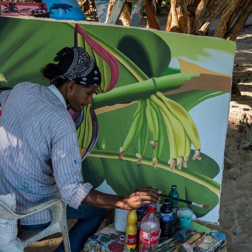 Доминикана. Разное 2 с экскурсии на Саману